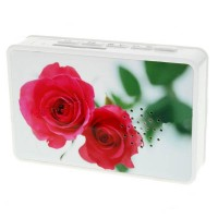 Mini Cassette Shaped Portable Rechargeable USB Host/SD Slot MP3 Player with Speaker (Roses)