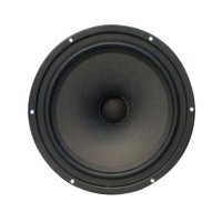SO-VOIOE SV220WR-66-134-033 8inch Antimagnetic Coaxial Speaker