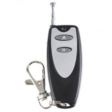 Universal Plasctic Case 2 keys Remote Control  With Keychain Black and Silver