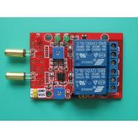 2 Channel 2 in 1 Tilt/Angle Sensor Relay Module 12V SW-520D Sensor