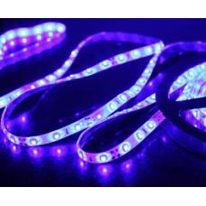 5M 60Led/m 3528 300leds Waterproof SMD LED Strips Bar Lights Flexible LED Strip-Blue
