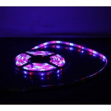 5M 60Led/m 3528 300leds Waterproof SMD RGB LED Strips Bar Lights Flexible LED Strip