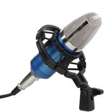 BM-700 Precision Zinc Alloy Mesh Head Studio Condenser Microphone Mic Online KTV