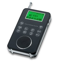 DEGEN DE1131 FM Stereo MW.SW DSP Receiver With 4G MP3 Player Recoder Repeat