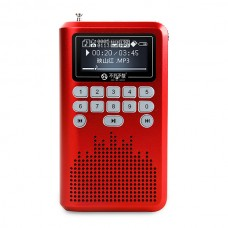 "LV290 Portable 1.8"" LCD Digital Speaker w/ 4G Card FM Radio / TF Slot / Mini USB Amplifier"