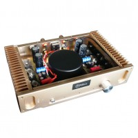 Super Popular Hood 1969 A Class Amplifier Assembled Board Perfect Version HD1969 Golden/ Silvery