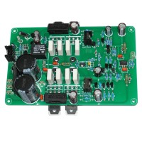 L20 Finished Single Channel Amplifier Board with Power Supply Pre-Amp Protection Circuit