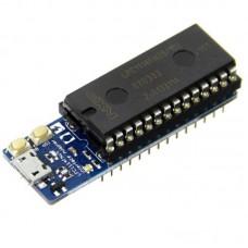 Mini Mbed LPC1114FN28 - Low Power ARM Cortex-M0 Development Board for DIY Arduino