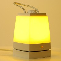 Portable LED Energy-Saving Plug Charging Nightlight Bedroom Lamp Light Sleep Baby Feeding USB Charging