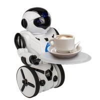 Remote Control Robot Intelligent RC Balanced Robot Wheelbarrow Dance Battle & Children Electric Toy
