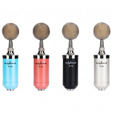 R18 Professional Dual Channel Condenser Microphone Audio Mic for Song Computer Karaoke