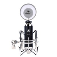 ISK AT500 Dual Channel Studio Condenser Microphone Network Karaoke Singing Audio Mic-Black