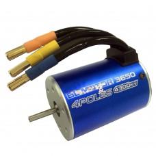 BL3650 3T 5900KV 4 Poles Sensorless Brushless Motor for 1/16 1/18 RC Car