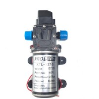 High Pressure Diaphragm Self Priming Water Pump 12V DC 100W 160Psi 8Lpm for Wash