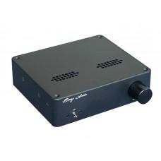 Car HIFI Power Amplifier DC12V TAS5613 150W+150W  Dual Channel Class D Audio AMP