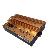 Car Audio Power Amplifier Board Subwoofer High Power 12V 24V 1000W
