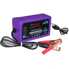 6V/12/24V LCD Fully Compatible Battery Charger for Car/Motorcycle/E-bicycle Short Circuit