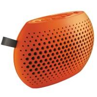 SBM100 Portable Multi-media Digital DSP FM Radio Speaker Music Player