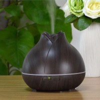 400ML Auto Shut-off Ultrasonic Air Humidifier DT-1519A Oil Diffuser Hot