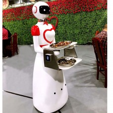 Robot Waiter Service Robot Food Delivery Intelligent Control Restaurant Shopping Malls 165cm Height