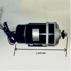 600W 48V Electric Motor for Bicycle Permanent Magnet DC Brush Motor MY1120ZXF for E-Tricycle