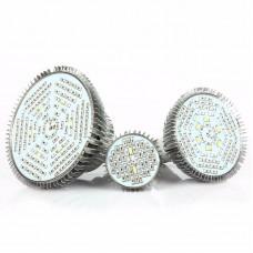 E27 LED Grow Light Bulb Full Spectrum LED Grow Bulb 30W 40 Beads for Indoor Hydroponic Plants