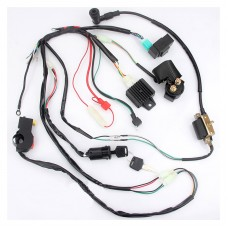 QUAD ATV Wiring Harness Kit Electric Start Ignition Coil for ATV Apollo Motocross 110-125CC