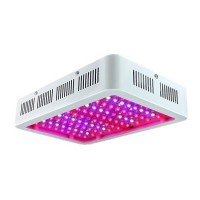 600W LED Grow Light Full Spectrum with Dual Chips 60pcs LEDs for Indoor Greenhouse Grow Tent Plants