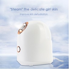 DK-022 Household Portable Face Steamer Nano Facial Steamer Mini Desktop Moisturizing Sprayer White