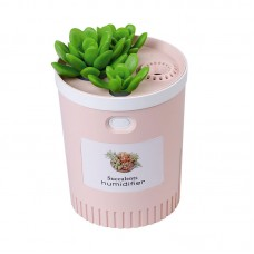 Dr-01 Succulents Humidifier 350ML Mini Air Humidifier Diffuser Night Light Simulation Potted Plant