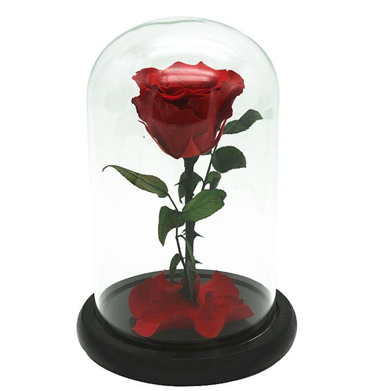 beauty and the beast real preserved red rose glass dome best gifts for lovers ebay. Black Bedroom Furniture Sets. Home Design Ideas