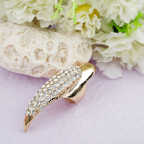 Retro Style Eagle Claw Shaped Long Nail Finger Ring