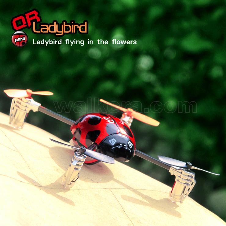 QR Ladybird