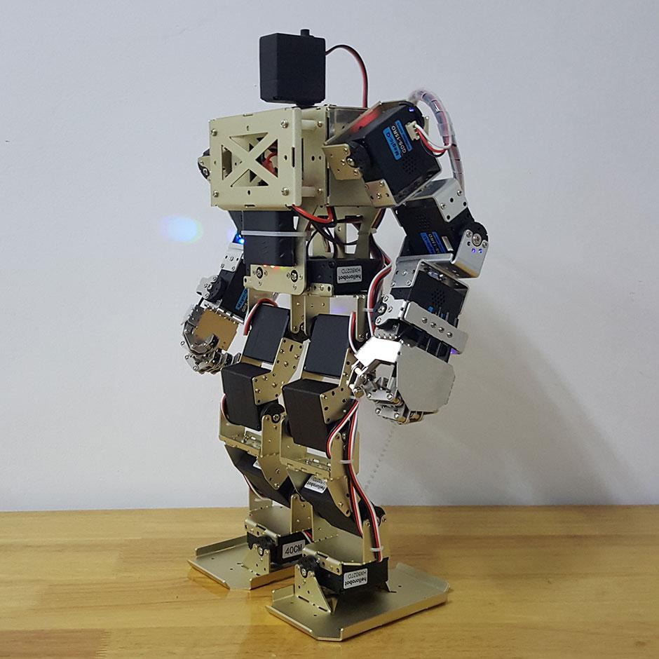 humanoid robot right hand arm with fingers manipulator servo for diy robotics ebay. Black Bedroom Furniture Sets. Home Design Ideas